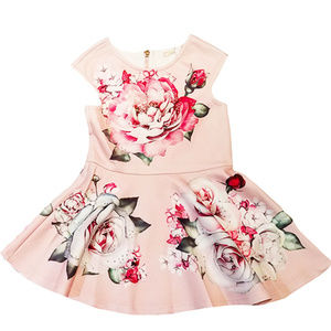 NEW Baby Sara Fit Flare Pink Roses Dress 2T 3T